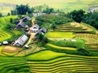 Home - Hanoi - Ninh Binh - Halong - Sapa - Duong Lam [saving nearly 4 million]