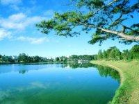 Home - Travel savings [Da Lat - Spring City]